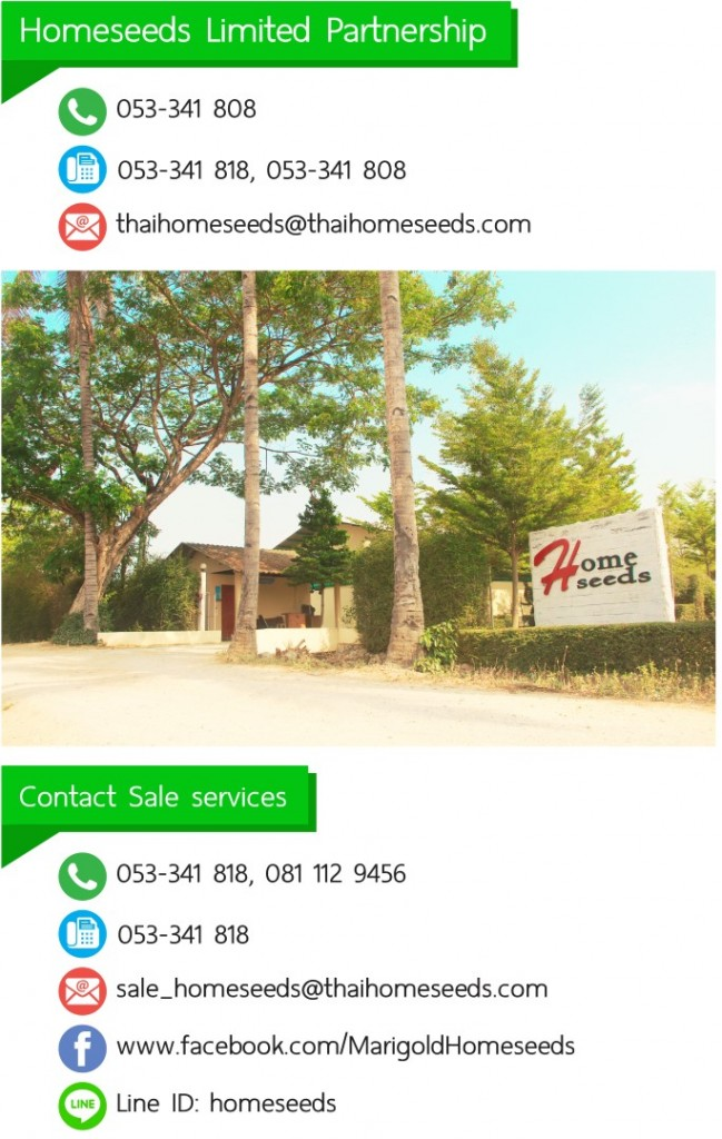 Contact Sale services